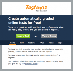 Image of testmoz website home page